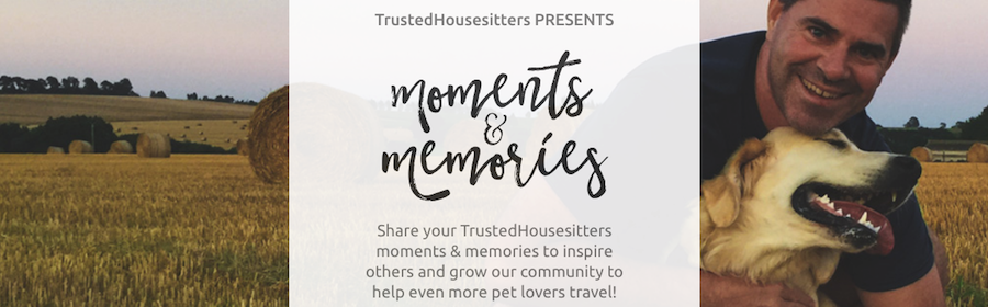 Trusted housesitters moments and memories Boast campaign